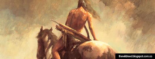 Dario y los caballos